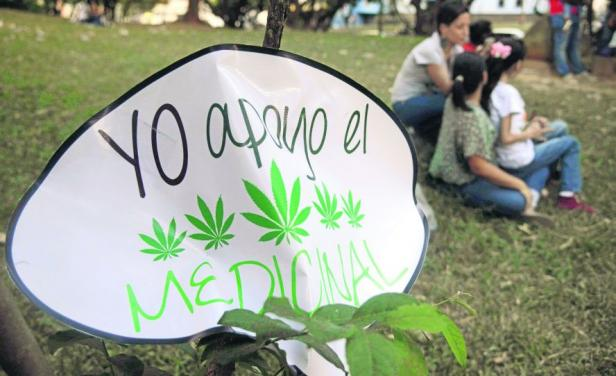 Uruguay: Piden regular el cannabis comestible